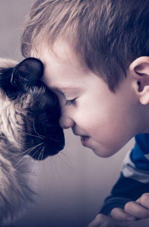 Conte thérapeutique pour enfants – Jérôme le petit garçon qui parlait aux animaux