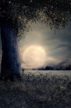 Hypnose pleine lune-nouvelle lune – Libérer ses émotions, écouter ses ressentis revenir a soi